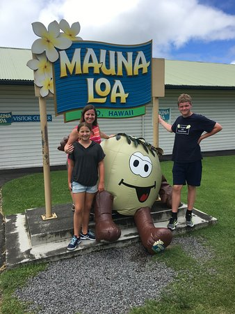 Keaau, HI: A bunch of nuts!