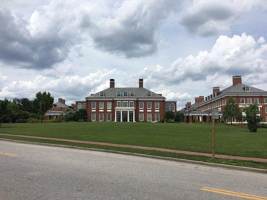 The Johns Hopkins University: photo6.jpg
