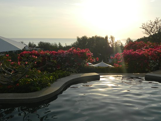 Pacific Club Resort: rooftop pool facing the ocean-outstanding