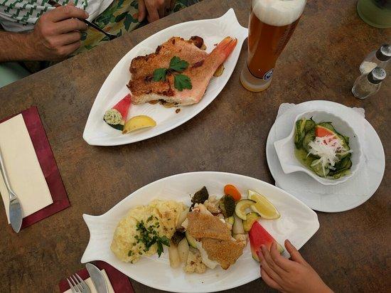 Werder havel fotos besondere werder havel for Asia cuisine brandenburg havel