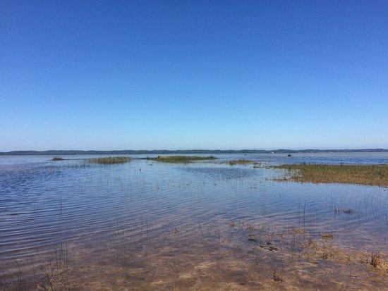 Carcans, France: Camping la Prairie
