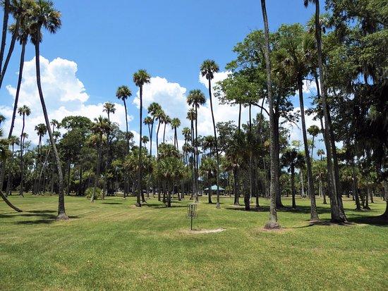 South Daytona, Floride : Beautiful disc course