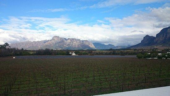 Franschhoek, Güney Afrika: DSC_1837_large.jpg