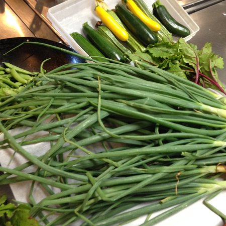 Ludlow, Vermont: Fresh from our farm, these gardens are really coming on strong!