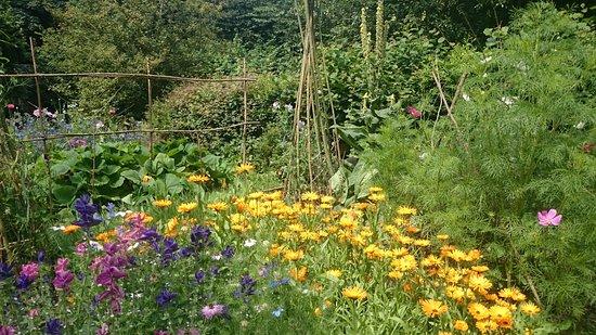 Natural Surroundings: Kitchen Garden