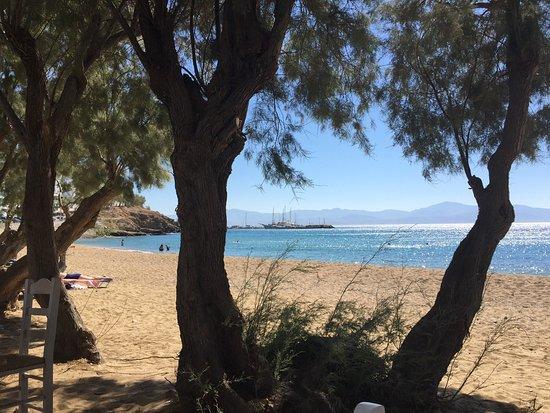 Logaras, Grecia: photo1.jpg