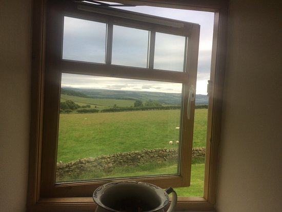 Carr Edge Farmhouse: View from the room