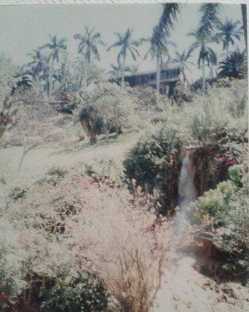 San Jose Purua