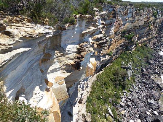 Varonil, Australia: North Head Sanctuary (Falaise 2)