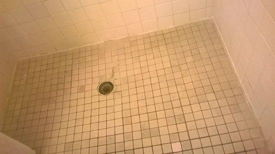 North Miami, FL: shower area showing mold & soap scum