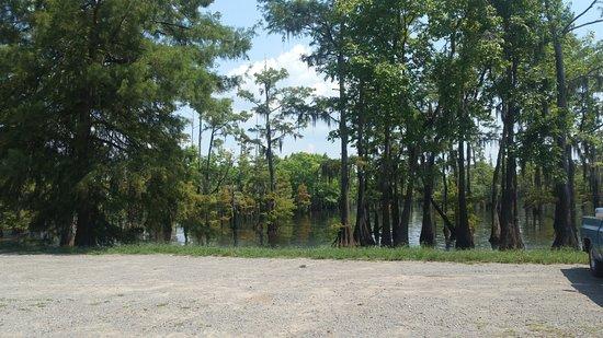 Cheniere Lake Park