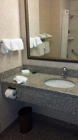 Drury Inn & Suites Findlay: Nice bathroom, but no fan or lock on door