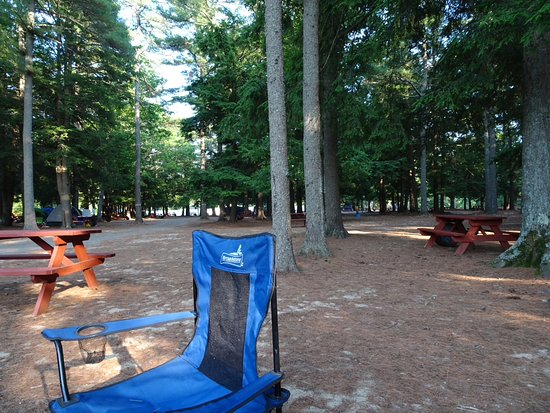 Old Orchard Beach Campground: Black Forest en temps calme