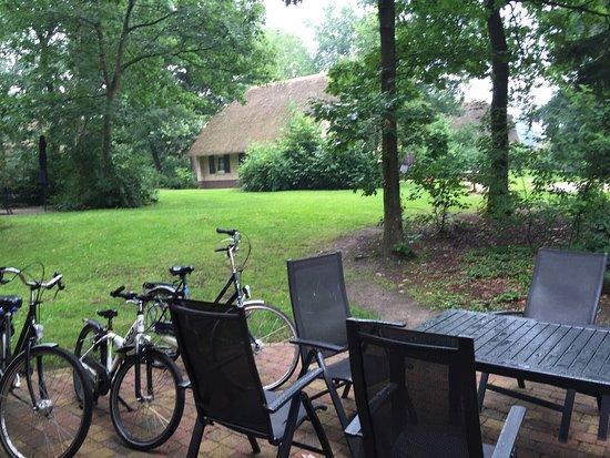 Ees, Países Bajos: Landal park