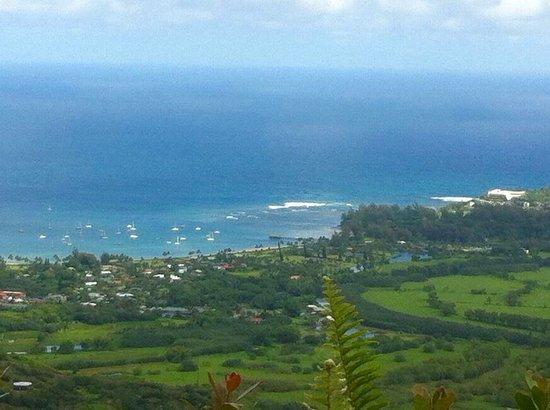 Hanalei, هاواي: photo4.jpg