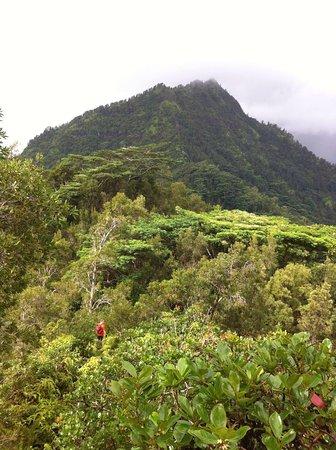 Hanalei, هاواي: photo5.jpg