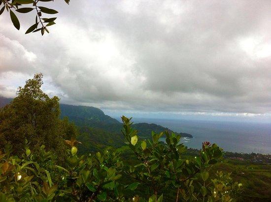 Hanalei, هاواي: photo6.jpg