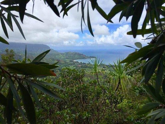 Hanalei, هاواي: photo8.jpg