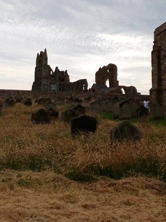 Whitby Abbey: IMG_20160724_121519_large.jpg