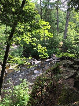 Nature Parks Around Eau Claire