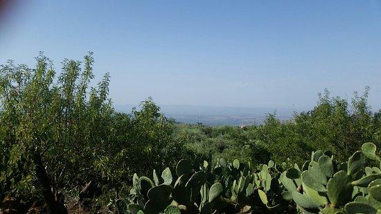 Landscape - AgriHotel Croce Vallone Photo