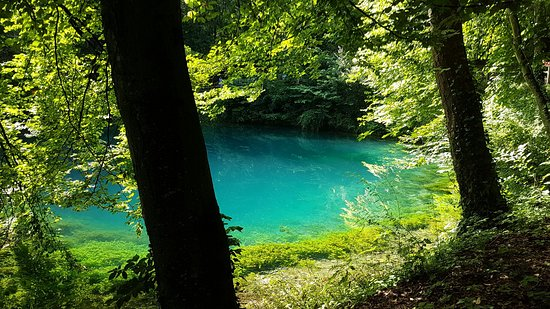 Blaubeuren, Germania: 20160717_160522_large.jpg