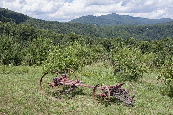 Spruce Pine, Kuzey Carolina: Farm Implement near the Pavillon