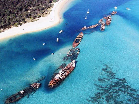 Tangalooma Wrecks are a must for divers - Moreton Island