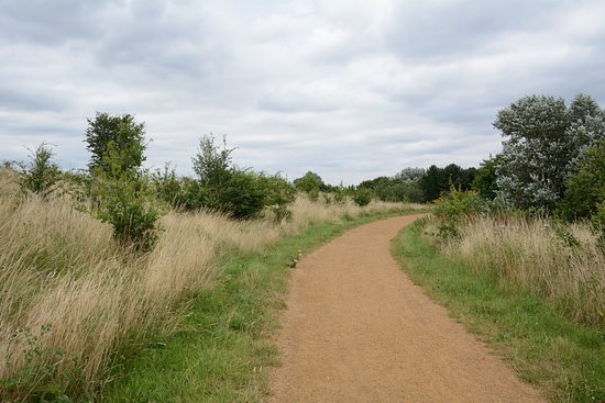 Ilford, UK: Fairlop Waters Country Park, Nature Reserve