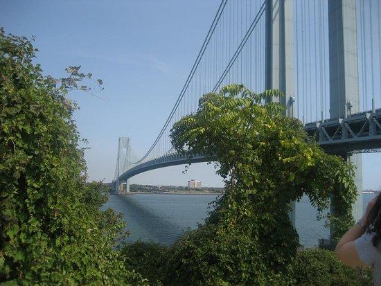 Staten Island لوحة