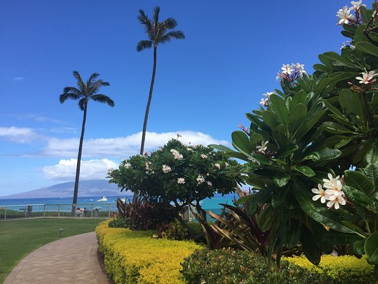 Aston at The Whaler on Kaanapali Beach: Views from Aston at The Whaler