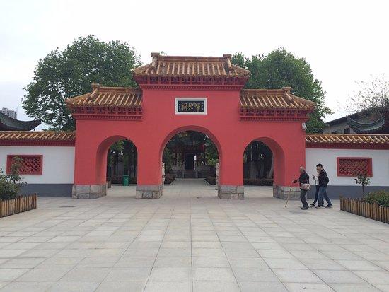 Zhongjing Museum of Medical History Document: 44444