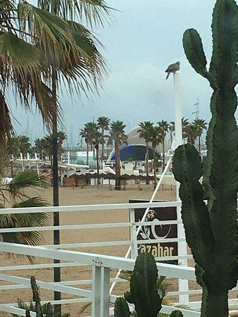 El Coso Hotel : Great views!