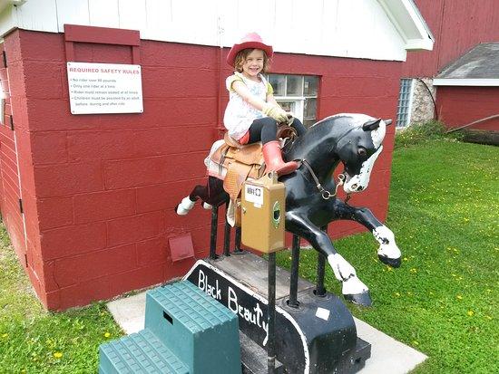 """Egg Harbor, WI: Plum Loco's """"Quarter Horse"""""""