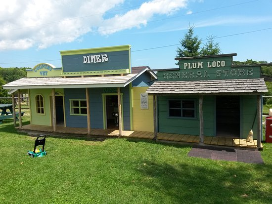 Egg Harbor, WI: Plum Loco's General Store, Diner, Country Vet Clinic