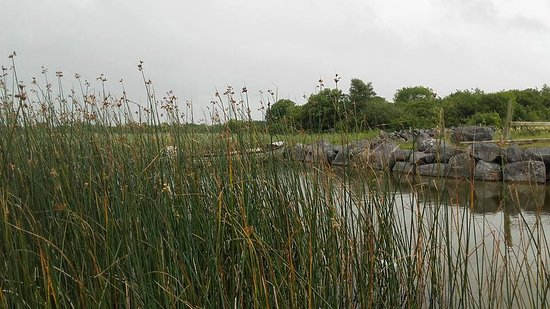 Moycullen, Irland: Lough Corrib
