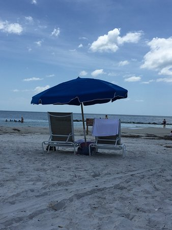 Honeymoon Island State Park: Great beach. Water was calm and crystal clear. Definitely a will go back. To us this was better