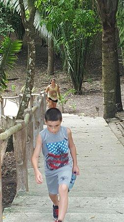 Museo y Ruinas Mayas Cahal Pech: 20160723_115504_large.jpg