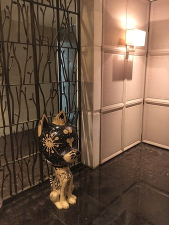 阿科巴斯豪華精選飯店照片