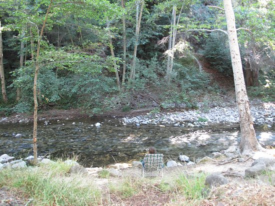 Big Sur Campground & Cabins: River next to campsite #108