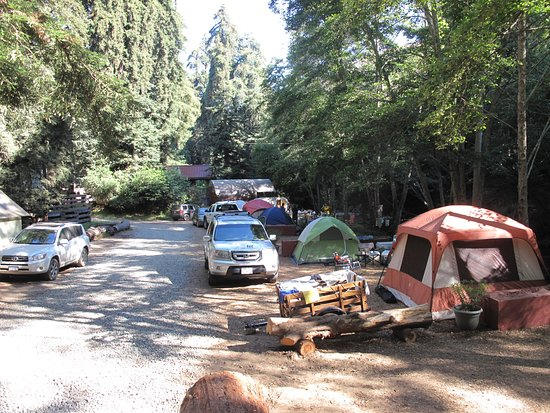 Big Sur Campground & Cabins: Showing #105 - #108