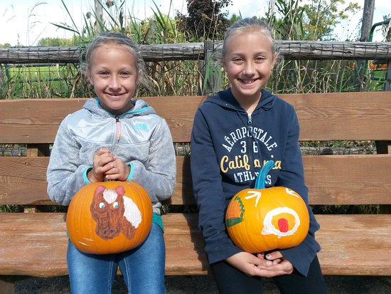 Egg Harbor, WI: Paint your own pumpkin!