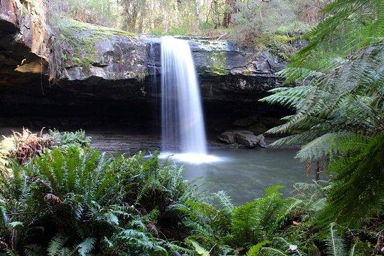 Image result for lower kalimna falls