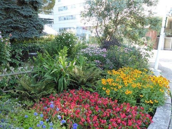 The central structure of the garden bild von jardin for Atlantique jardin