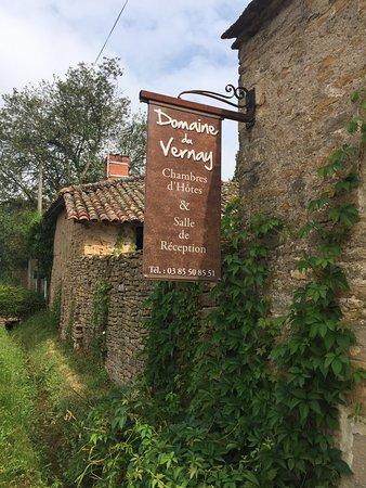 Le Domaine du Vernay: photo3.jpg