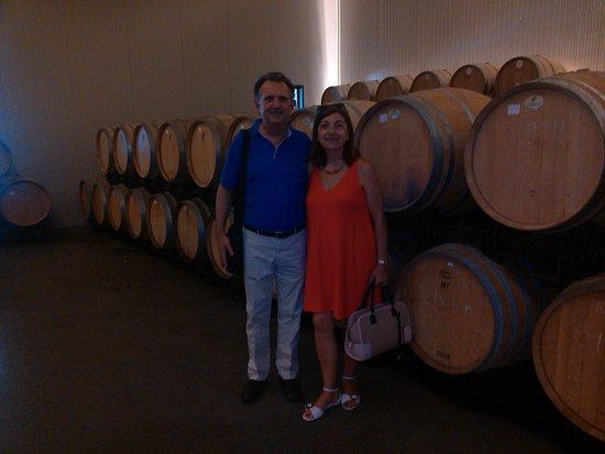 Jumilla, Spagna: Visita a la bodega del vino de crianza