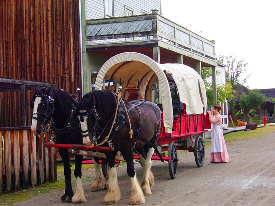 Fort Steele Heritage Town : Waggon