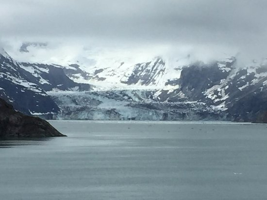 Glacier Bay Nationalpark, AK: Johns Hopkins Glacier from the NCL Pearl