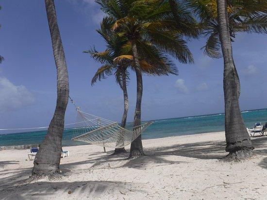 Divi Carina Bay All Inclusive Beach Resort: photo2.jpg