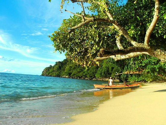 Sulawesi, Indonesien: 36025090_large.jpg